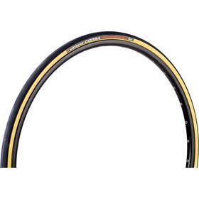 Vittoria Corsa Vouwband 700x23c, beige/zwart